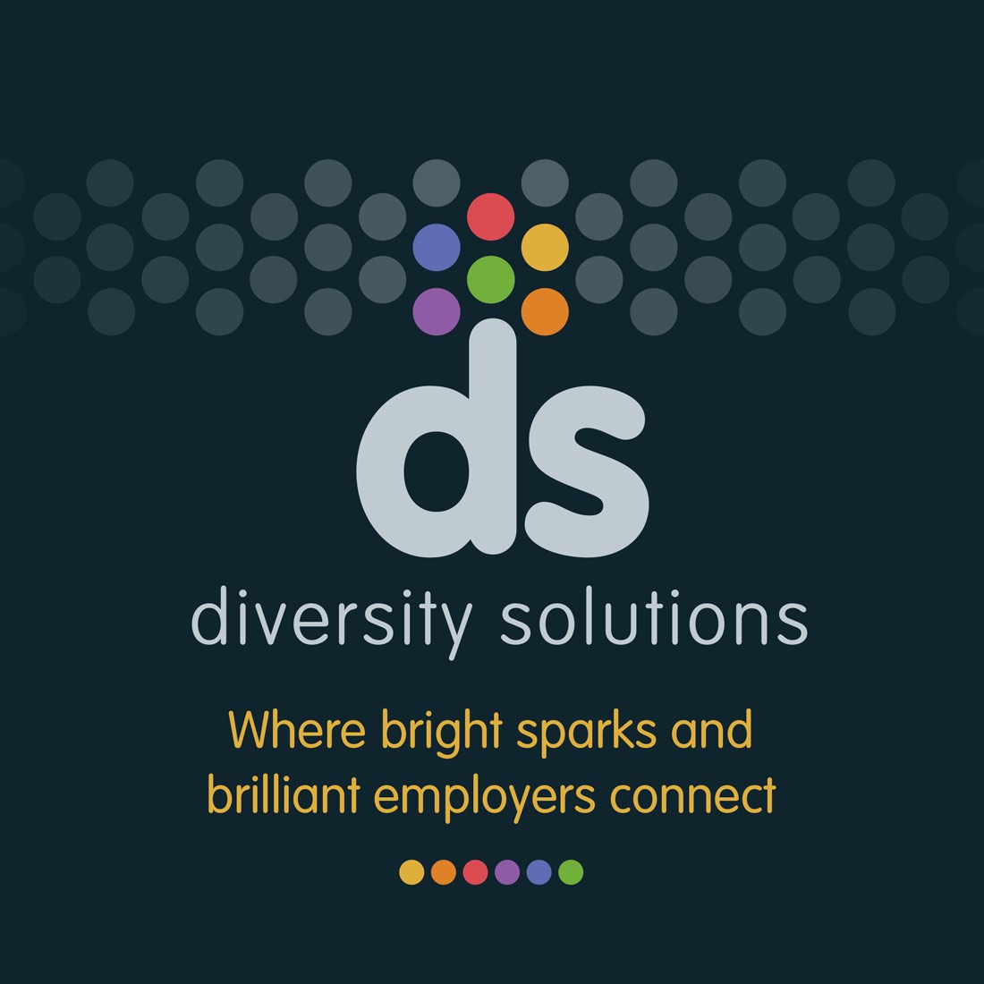 diversitysolutions